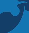 مركز تميز الخبراء Logo